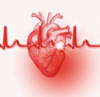 心肌炎的原因,是怎么引起 的